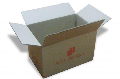 Vente de carton perfect carton serviette de table fay en vente chez ekoolocm with vente de - Carton demenagement castorama ...